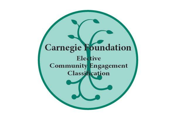 Carnegie Elective Classification