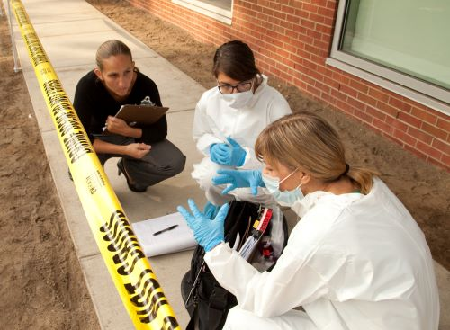 Professor Jessica Zarate guides Forensic Students in a research exercise.